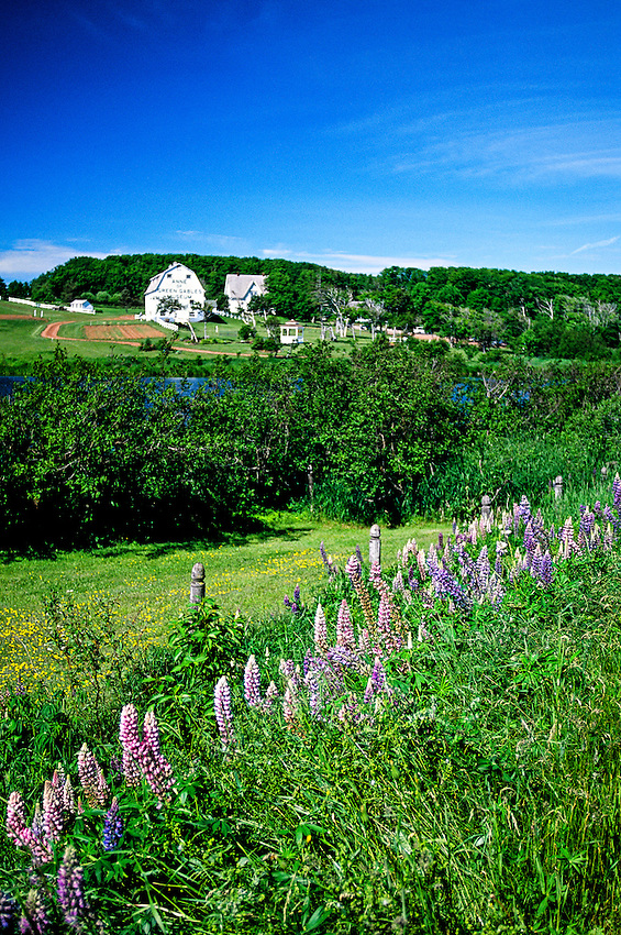 Anne of Green Gables Museum at Silver Bush, near Park Corner, Prince Edward Island, Canada