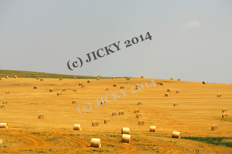 Straw bales along highway 85 north of Bowman.
