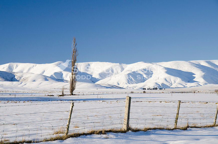 Snow covers paddocks  and the Hawkdun ranges near Wedderburn, in mid winter Central Otago, South Island
