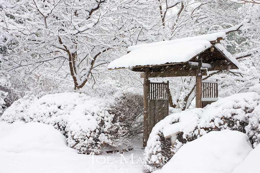 Entrance gate to the Japanese garden at the Minnesota landscape arboretum during heavy snow...The Minnesota Landscape Arboretum is a 1,137-acre horticultural garden and arboretum located about 4 miles west of Chanhassen, Minnesota. It is part of the Department of Horticultural Science in the College of Food, Agricultural and Natural Resource Sciences at the University of Minnesota.
