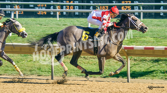 Southern Girl winning at Delaware Park on 9/14/15