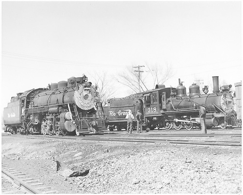 3/4 engineer's-side view of D&amp;RGW #318 and #1202 in Montrose yards.<br /> D&amp;RGW  Montrose, CO  Taken by Richardson, Robert W. - 4/16/1952