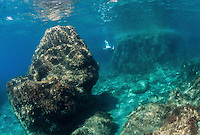Underwater by the island of Ponza, Italy