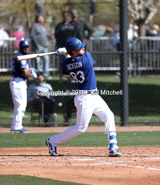 Drew Jackson - Los Angeles Dodgers 2018 spring training (Bill Mitchell)