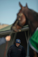 LOUISVILLE, KY - MAY 1: Trainer Mick Ruis watches his Derby Contender, Bolt d'Oro, cool out after a trip around the the track at Churchill Downs on May 1, 2018 in Louisville, Kentucky. (Photo by Eric Patterson/Eclipse Sportswire/Getty Images)