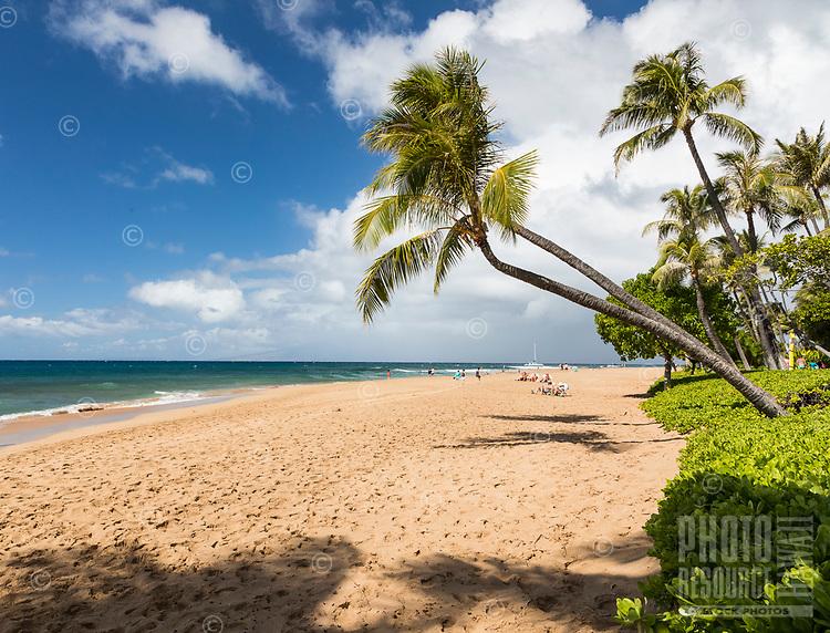 People enjoy a day at tree-lined Ka'anapali Beach, Maui.