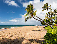 People enjoy a day at tree-lined Ka'anapali Beach, Maui.