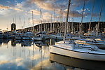 Sandy Bay marina with the Wrest Point casino beyond.  Hobart, Tasmania, AUSTRALIA