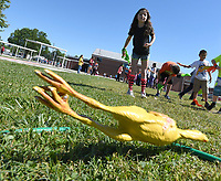 NWA Democrat-Gazette/J.T. WAMPLER Vivienne Miller, 7, throws a rubber chicken at a target Thursday May 25, 2017 during Field Day at Frank Tillery Elementary School in Rogers. Today (FRIDAY MAY 26) is the last day of school for Rogers schools.