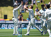 1st December 2017, Basin Reserve, Wellington, New Zealand; International Test Cricket, Day 1, New Zealand versus West Indies;  Neil Wagner celebrates with Henry Nicholls the wciket of Brathwaite