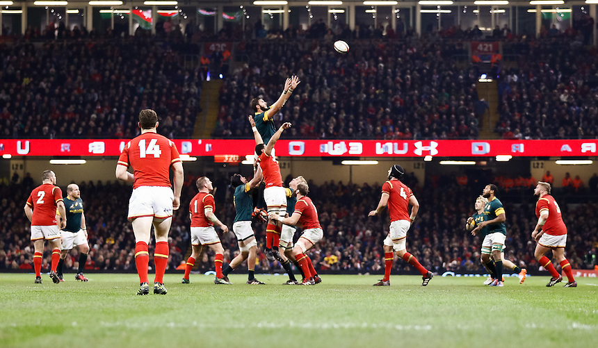 South Africa's Lodewyk De Jager claims the lineout<br /> <br /> Photographer Simon King/CameraSport<br /> <br /> International Rugby Union Friendly - Wales v South Africa - Saturday 26th November 2016 - Principality Stadium - Cardiff<br /> <br /> World Copyright &copy; 2016 CameraSport. All rights reserved. 43 Linden Ave. Countesthorpe. Leicester. England. LE8 5PG - Tel: +44 (0) 116 277 4147 - admin@camerasport.com - www.camerasport.com