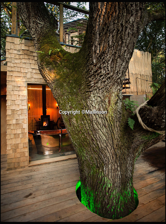 BNPS.co.uk (01202 558833)<br /> Pic: Mallinson/BNPS<br /> <br /> Bathroom with a view...<br /> <br /> Release your inner Tarzan...in Britain's poshest treehouse.<br /> <br /> A luxury glamping site in deepest Dorset has created a luxurious treehouse that comes with its own sauna, hot tub, rotating fireplace and pizza oven.<br /> <br /> The Woodsman's Treehouse is perched 30ft from the ground on long stilts and has two floors. <br /> <br /> It has a spiral staircase and a stainless steel slide for quick access to the ground and can be rented out from £390 a night. <br /> <br /> It is located at the Crafty Camping glamping site at Holditch in west Dorset.