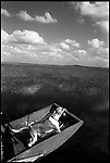 1998-Hound dog catches the warm florida air in the Everglades on a hunting trip. The Florida Everglades are a disappearing world. Overpopulation, the sugar and cattle industry, mismanagement of the land, droughts and bush fires are just a few of the problems the Florida Everglades are facing. Here Glen Wilsey driving his airboat. According to Glen the best thing about being a tour guide in the everglades is driving the airboats. Riding an airboat is fun but driving an airboat is an awesome feeling.