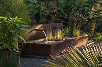 Water feature, rectangular pond stucco trough with foliage plants in afternoon light; Kuzma Garden