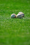 8 March 2010: A grouping of baseballs lie on the grass infield prior to a Spring Training game between the Florida Marlins and the Washington Nationals at Space Coast Stadium in Viera, Florida. The Marlins defeated the Nationals 12-2 in Grapefruit League action. Mandatory Credit: Ed Wolfstein Photo