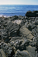 Lava formations in rock on St. Paul Island, Pribilof Islands, Alaska