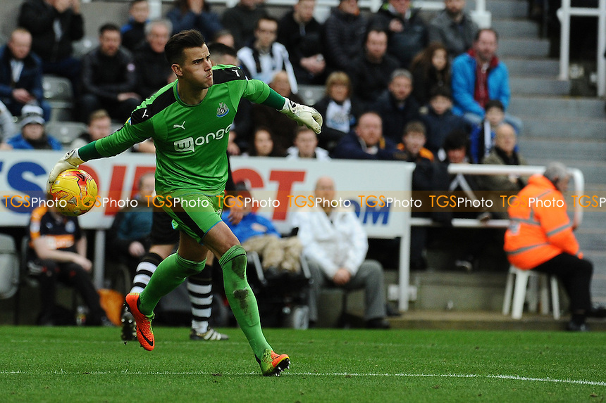 Karl Darlow of Newcastle United during Newcastle United vs Bristol City, Sky Bet EFL Championship Football at St. James' Park on 25th February 2017