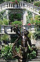 Europe/Italie/Lac de Come/Lombardie/Tremezzo : Villa Carlotta - Le jardin