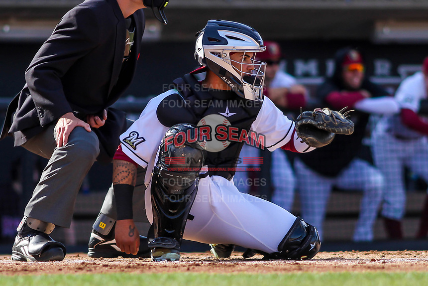 Wisconsin Timber Rattlers catcher Mario Feliciano (4) awaits a pitch during a Midwest League game against the Quad Cities River Bandits on April 8, 2017 at Fox Cities Stadium in Appleton, Wisconsin.  Wisconsin defeated Quad Cities 3-2. (Brad Krause/Four Seam Images)