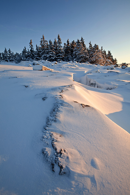 The sun rise illuminates the snow covered granite rocks on Schoodic Point in winter on the Schoodic Peninsula in Acadia National Park, Maine, USA