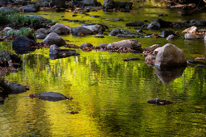 Autumn reflections in a stream, Kent, Connecticut, USA