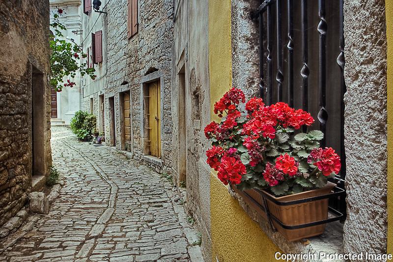 Cobblestone street and geranium flowers in window, Bale, Croatia