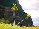 Australia-Lord Howe Island