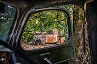 Old International Harvester truck during the fall in the Ouachita National Forrest in Arkansas.