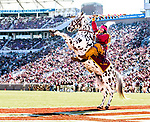 Florida State mascot Osceola atop Renegade celebrate and FSU touchdown against Delaware State in Tallahassee, Fl.