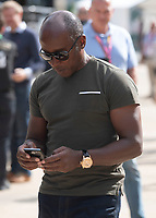 Anthony HAMILTON during the Formula 1 Rolex British Grand Prix 2019 at Silverstone Circuit, Towcester, England on 14 July 2019. Photo by Vince  Mignott.