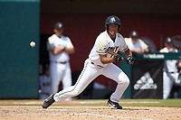 Anfernee Crompton (13) of the Army Black Knights attempts to lay down a bunt during the game against the North Carolina State Wolfpack at Doak Field at Dail Park on June 3, 2018 in Raleigh, North Carolina. The Wolfpack defeated the Black Knights 11-1. (Brian Westerholt/Four Seam Images)