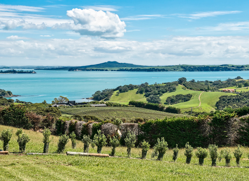 View from the Mudbrick Vineyard and Restaurant, Oneroa, Waiheke Island