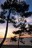 Europe/France/Aquitaine/33/Gironde/Bassin d'Arcachon/Les Abatilles: Soleil couchant sur le bassin