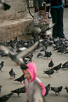 Feeding the pigeons outside the New Mosque, Istanbul, Turkey