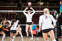 STANFORD, CA -- September 27, 2017. <br /> The Stanford Cardinal defeats the Arizona State Sun Devils 3-0 at Maples Pavilion.