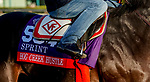 October 28, 2019 : Breeders' Cup Sprint entrant Hog Creek Hustle, trained by Vickie L. Foley, exercises in preparation for the Breeders' Cup World Championships at Santa Anita Park in Arcadia, California on October 28, 2019. John Voorhees/Eclipse Sportswire/Breeders' Cup/CSM