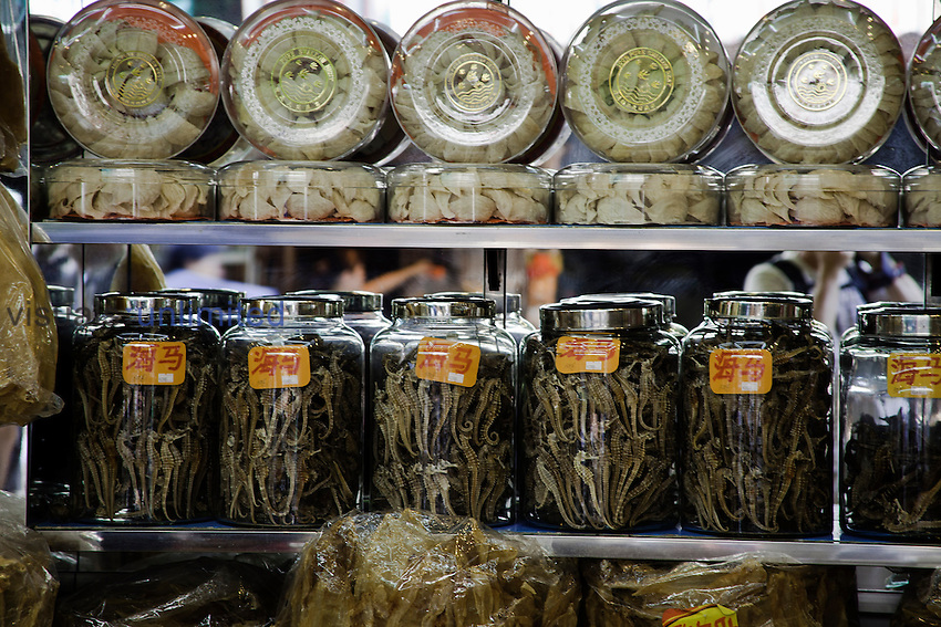 Glasses jars full of dried seahorse for sale as aphrodisiacs at a medicine shop in Guangzhou, China.
