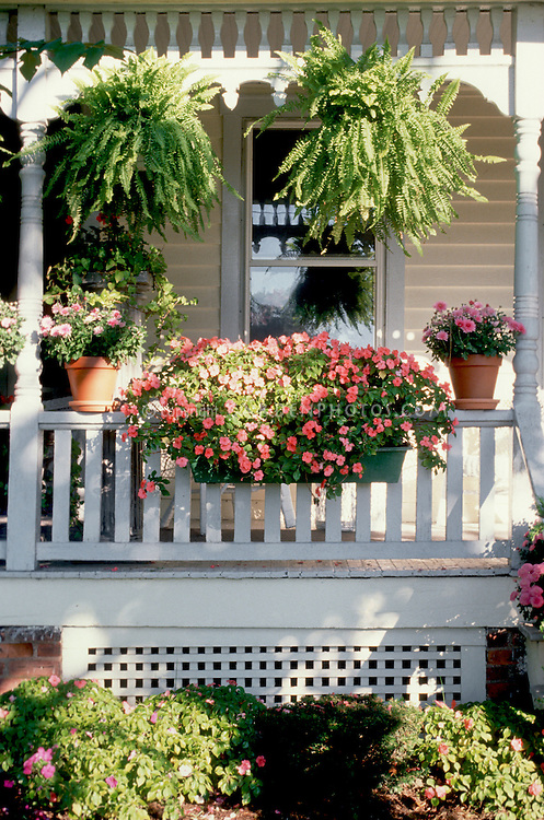 Front porch windowbox of flowers Plant Flower Stock