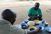 ZAMBIA, Mazabuka, Chikankata area, medium scale farmer Stephen Chinyama, homestead, food with nshima, maize mash