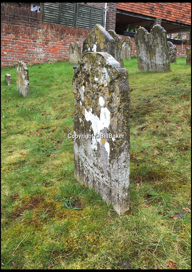 BNPS.co.uk (01202 558833)<br /> Pic: BillBaker/BNPS<br /> <br /> Its an Easter Miracle - Jesus on a donkey appears in lichen on a Winchester gravestone.<br /> <br /> An RE teacher has been left godsmacked after seeing Jesus riding on a donkey - depicted on a gravestone in lichen.<br /> <br /> Bill Baker, 39, was in the grounds of the St John the Baptist Church in Winchester, Hants, just before Easter when he spotted the image.<br /> <br /> The teacher was next to the ancient edifice practicing his hobby of 'taphophilia', better known as graveyard tourism.<br /> <br /> Walking between the graves he spotted the scene which is described in the Bible and commemorates Jesus' triumphal entry into Jerusalem on Palm Sunday. <br /> <br /> Father-of- one Bill immediately grabbed his phone and took a photo in case the depiction of the Lord suddenly ascended.