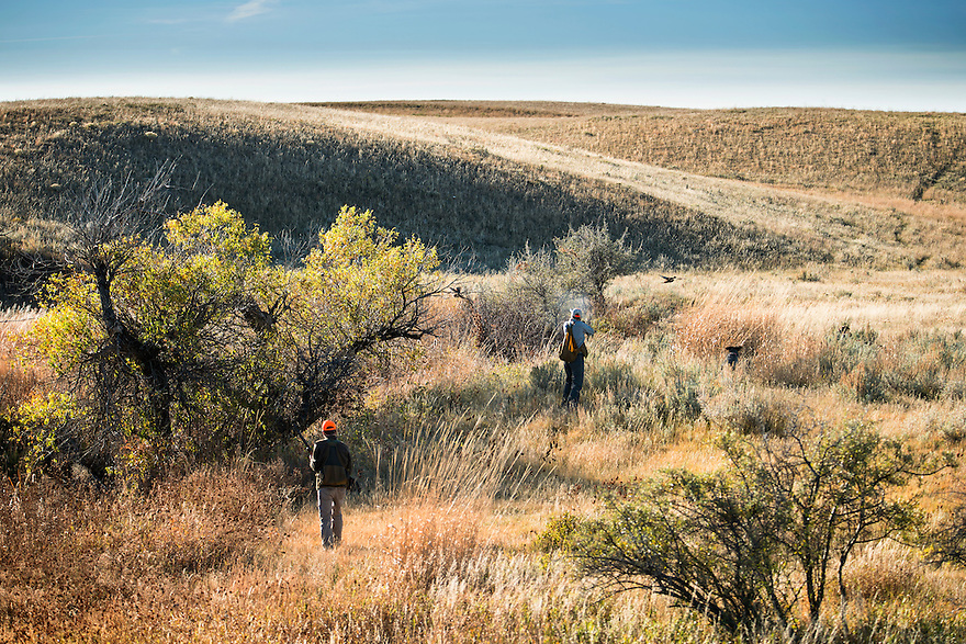 Molly Stratton, right, fires her shotgun at flushed pheasant while hunting north of the Missouri River Breaks.