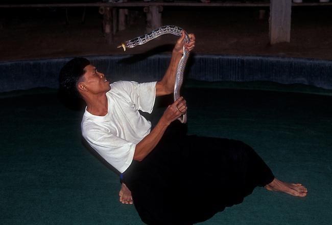 Snake handler at Mae Sa Snake Farm, near Chiang Mai, Chiang Mai Province, Thailand, Asia