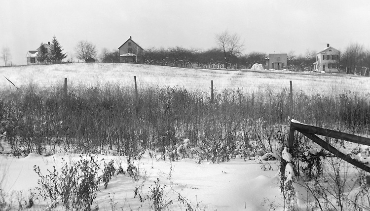 A winter rural scene. Circa 1900.