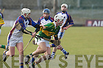 Kerry's Shane Brick (captain).