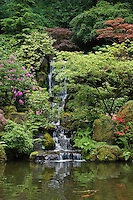 A waterfall in a Rhododendron forest at the Portland Japanese garden, considered the most authentic outside of Japan - PORTLAND, OREGON.