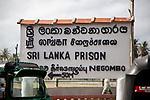 Sri Lanka | Negombo