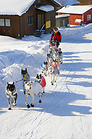 Doug Swingleys team trots through streets of Ruby arrving @ Chkpt 2006 Iditarod Alaska Winter