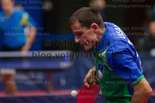 Slovenia's Sas Lasan plays during the qualifier of the ITTF World Tour Hungarian Open in Budapest, Hungary on January 17, 2012. ATTILA VOLGYI