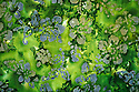 Green batik fabric for backgrounds and texture