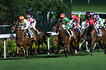 Jockey #10 Chad Schofield riding Balay Balay (L) leading race 3 during Hong Kong Racing at Happy Valley Race Course on November 29, 2017 in Hong Kong, Hong Kong. Photo by Marcio Rodrigo Machado / Power Sport Images